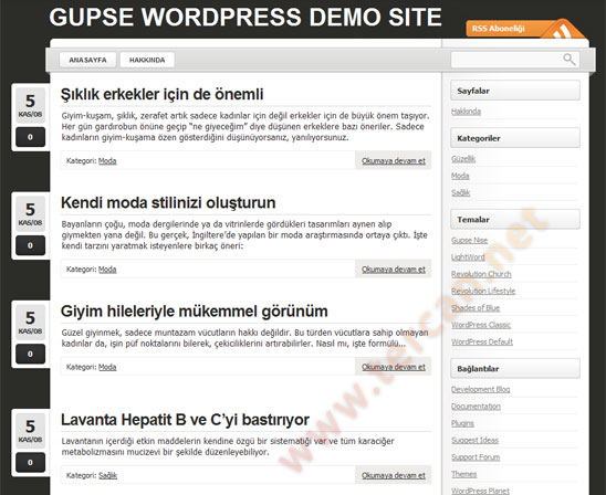 WordPress Lightword temas Trke evirisi