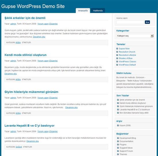 WordPress Shades Of Blue teması Türkçe çevirisi